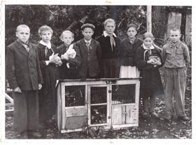 Юные кролиководы